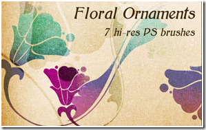 Floral Ornaments by Pehaa