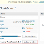 Upgrading WordPress Automatically