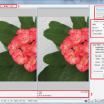 Resize Images in Adobe Illustrator and Photoshop - A Quick Way